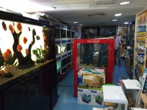 Excellence Pet Shop Abu Dhabi.JPG